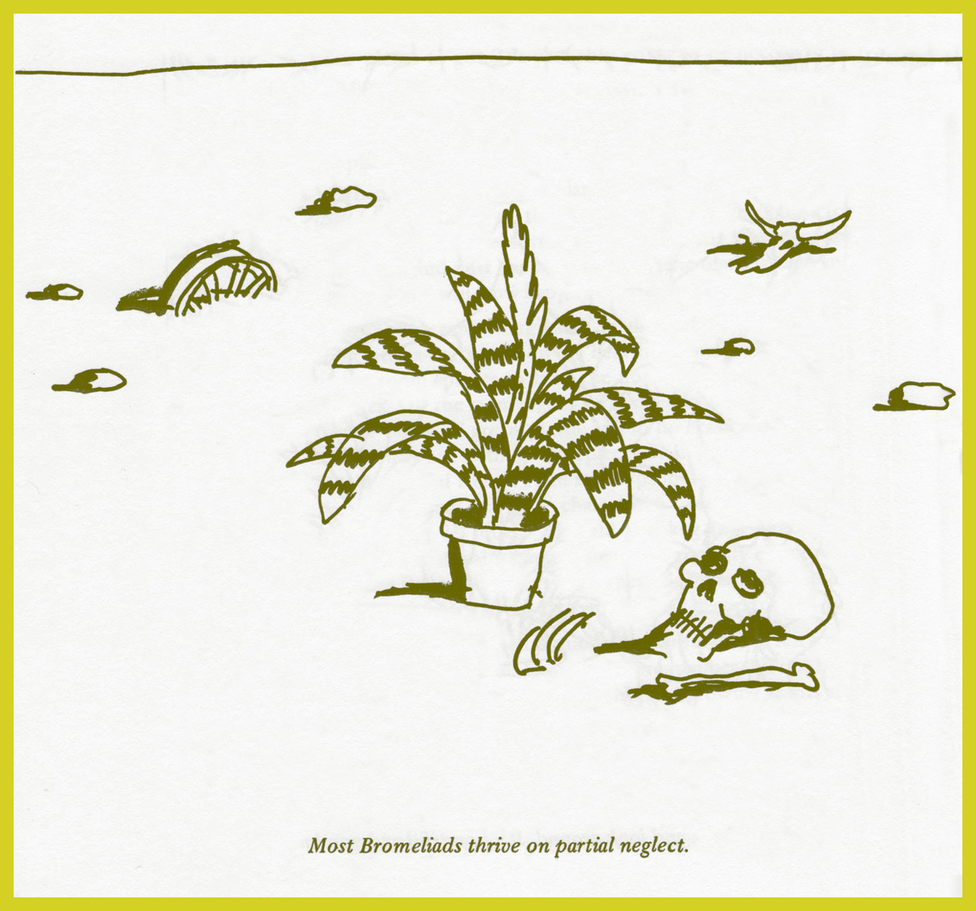 RubinPlantasia01A