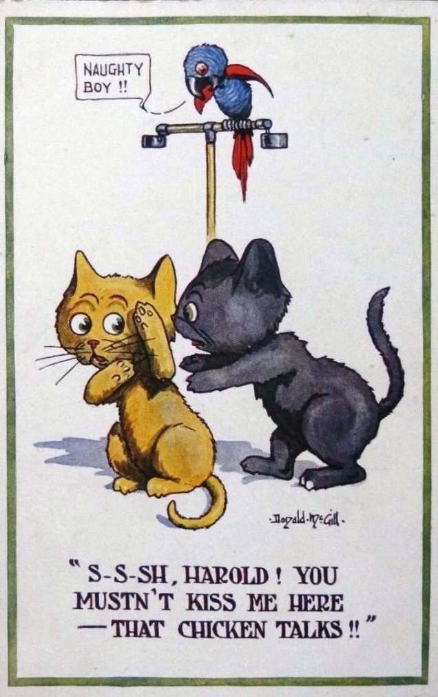 donaldmcgill-postcard-kitties